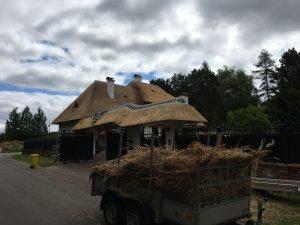 Nieuw opgeleverde rieten dak | Rietdekkersbedrijf Scholman
