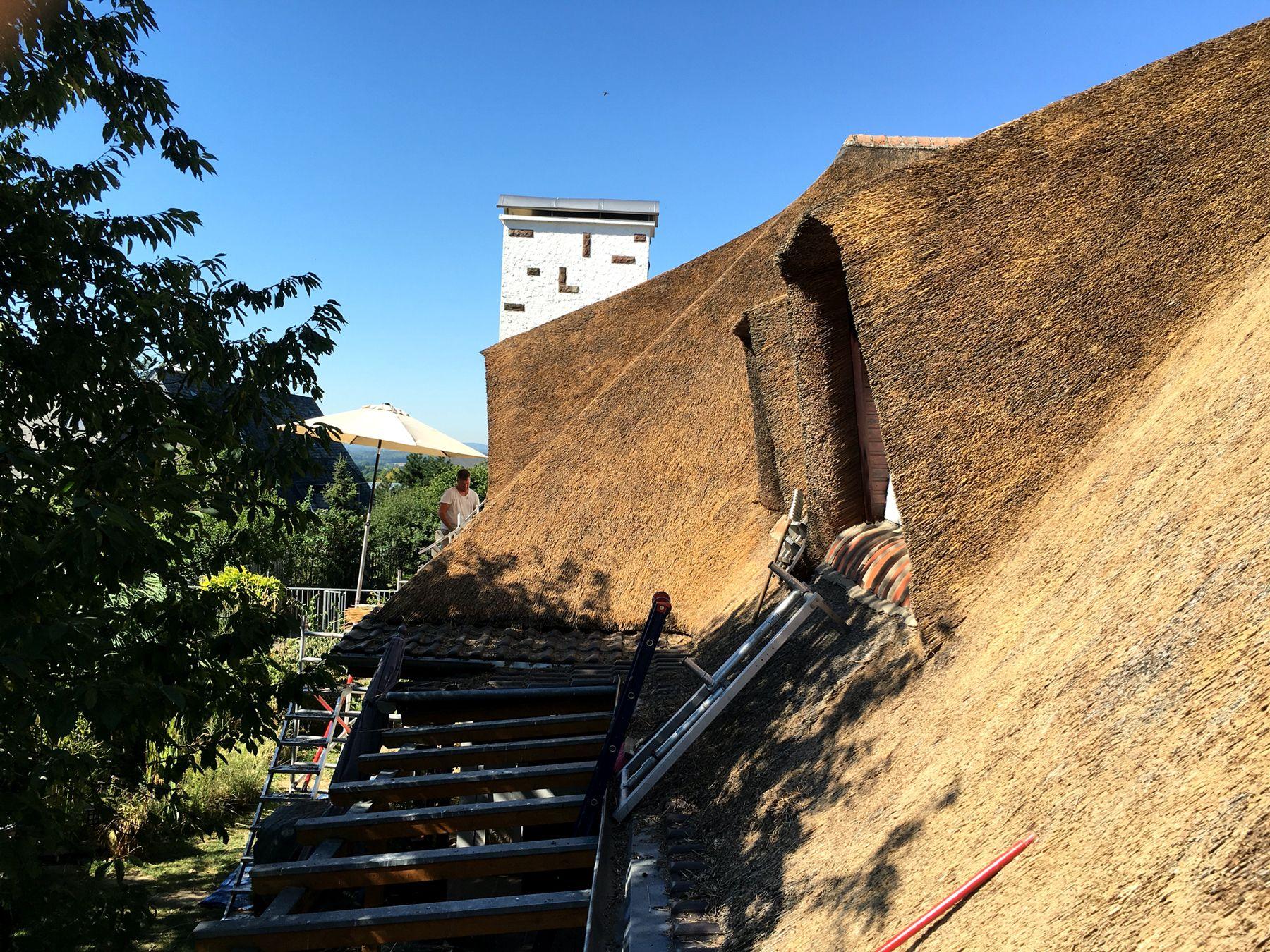 De rietdekkers aan het werk | Rietdekkersbedrijf Scholman