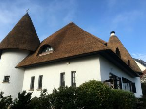 Rieten dak met minaret | Rietdekkersbedrijf Scholman