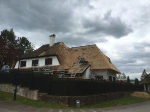 werk in uitvoering aan een nieuw rieten dak | Rietdekkersbedrijf Scholman