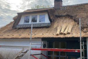 Impressie van het renoveren van een rieten dak door Rietdekkersbedrijf Scholman